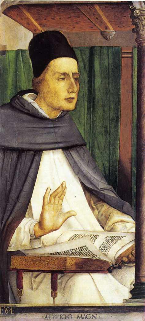 https://upload.wikimedia.org/wikipedia/commons/8/83/Alberto_Magn_(Alberto_Magno)_-_Studiolo_di_Federico_da_Montefeltro.jpg