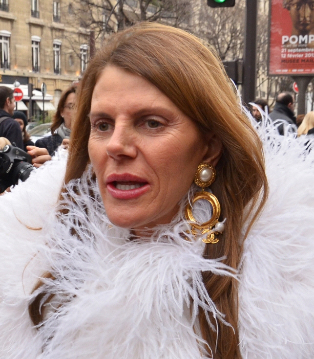 The 56-year old daughter of father (?) and mother(?) Anna Dello Russo in 2018 photo. Anna Dello Russo earned a  million dollar salary - leaving the net worth at 2 million in 2018