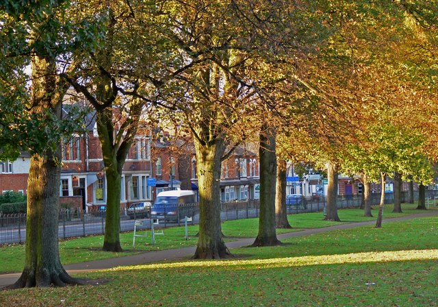 Autumn at the Aylestone Recreation Ground - geograph.org.uk - 1001953.jpg