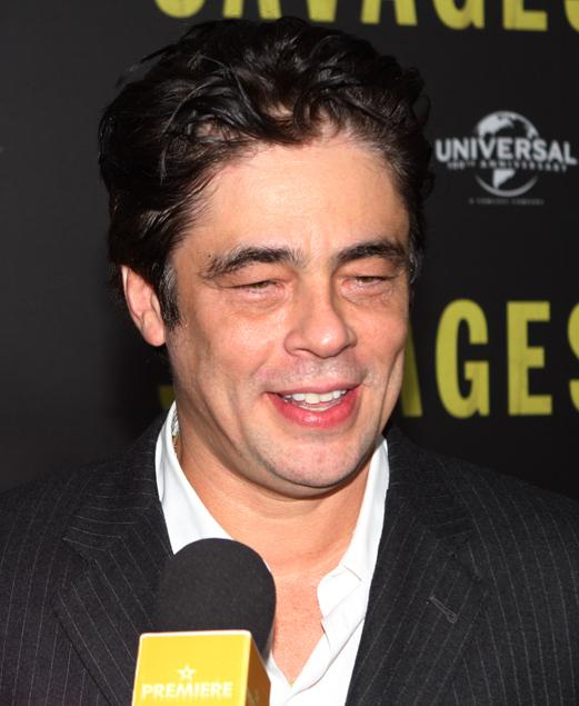 Benicio Del Toro Größe