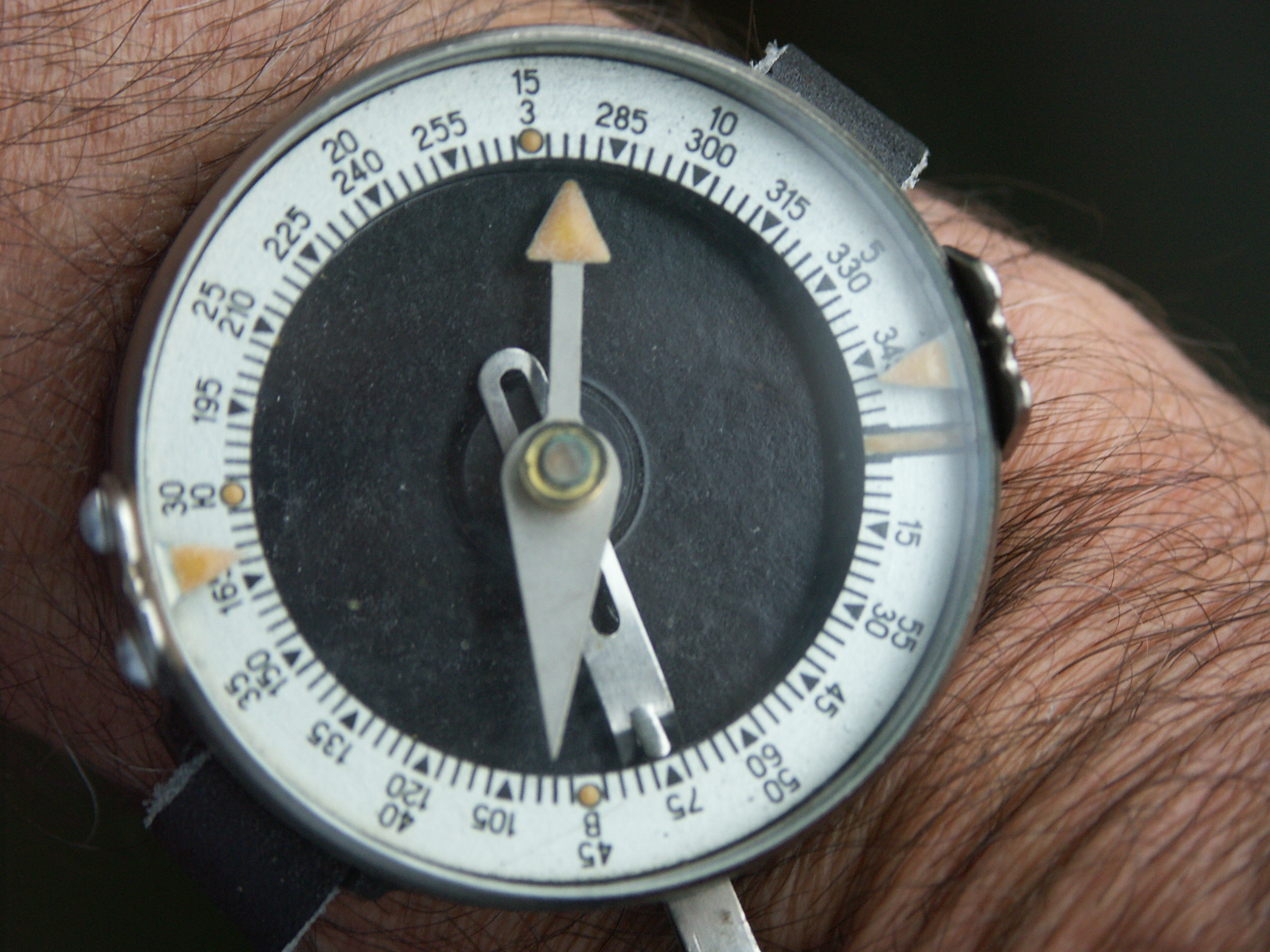 Points of The Compass[edit