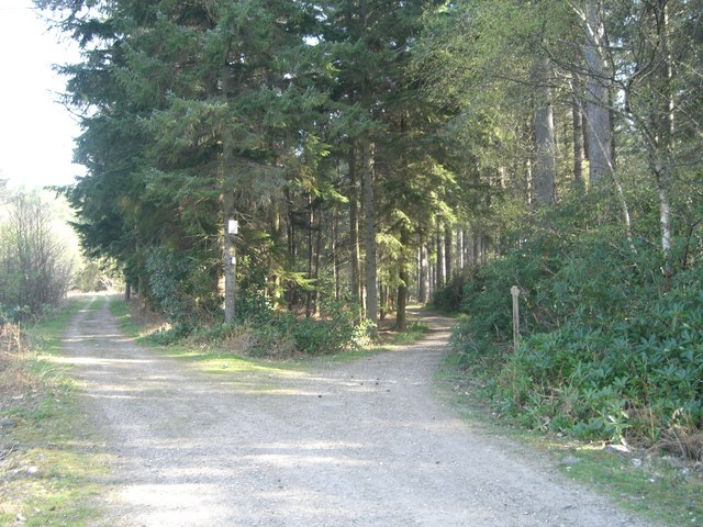 Bridleway on Silver Hill - geograph.org.uk - 403162