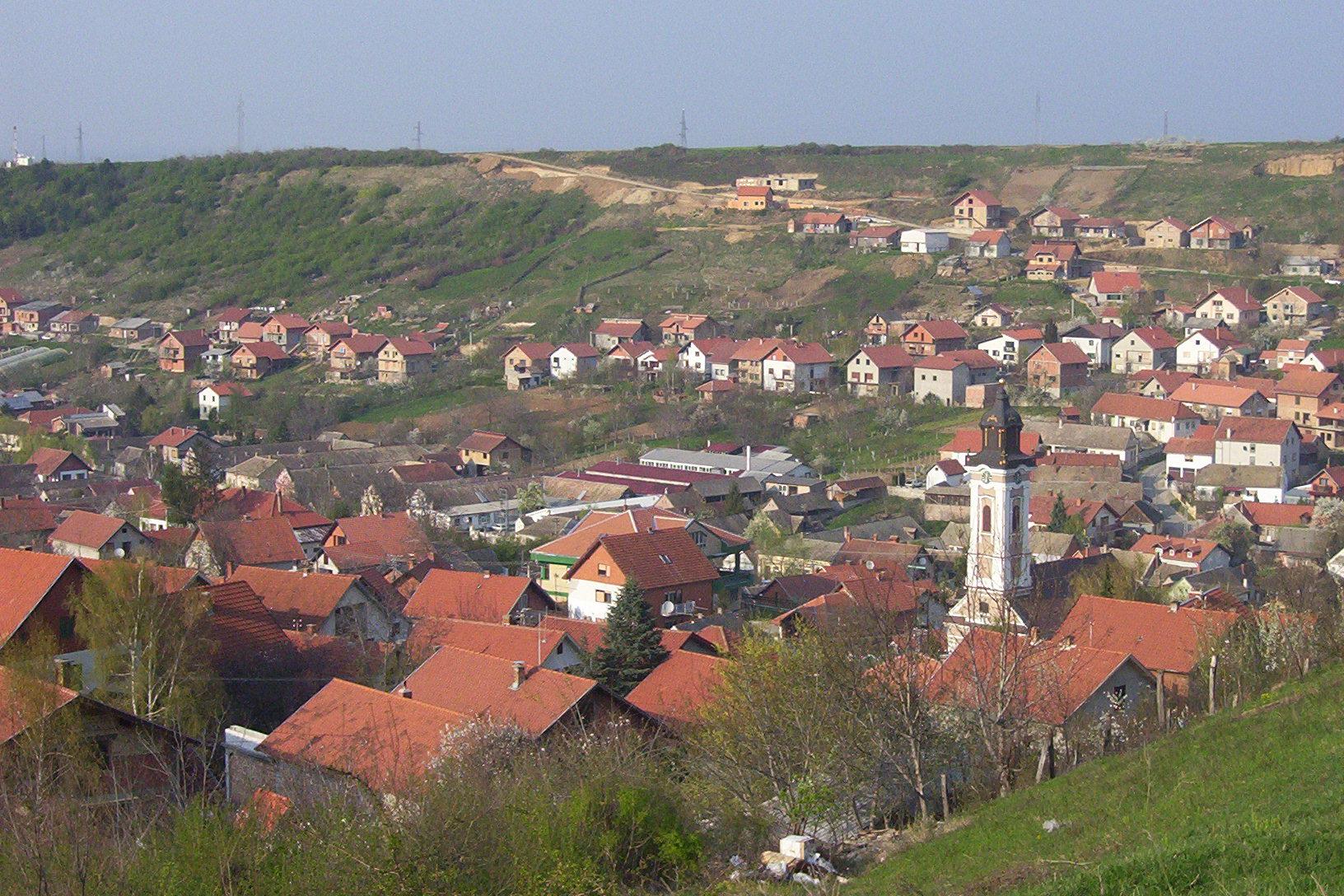 Bukovac, Novi Sad