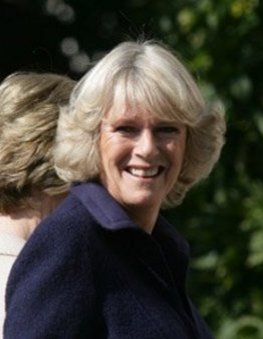 Image:Camilla, Duchess of Cornwall.jpg