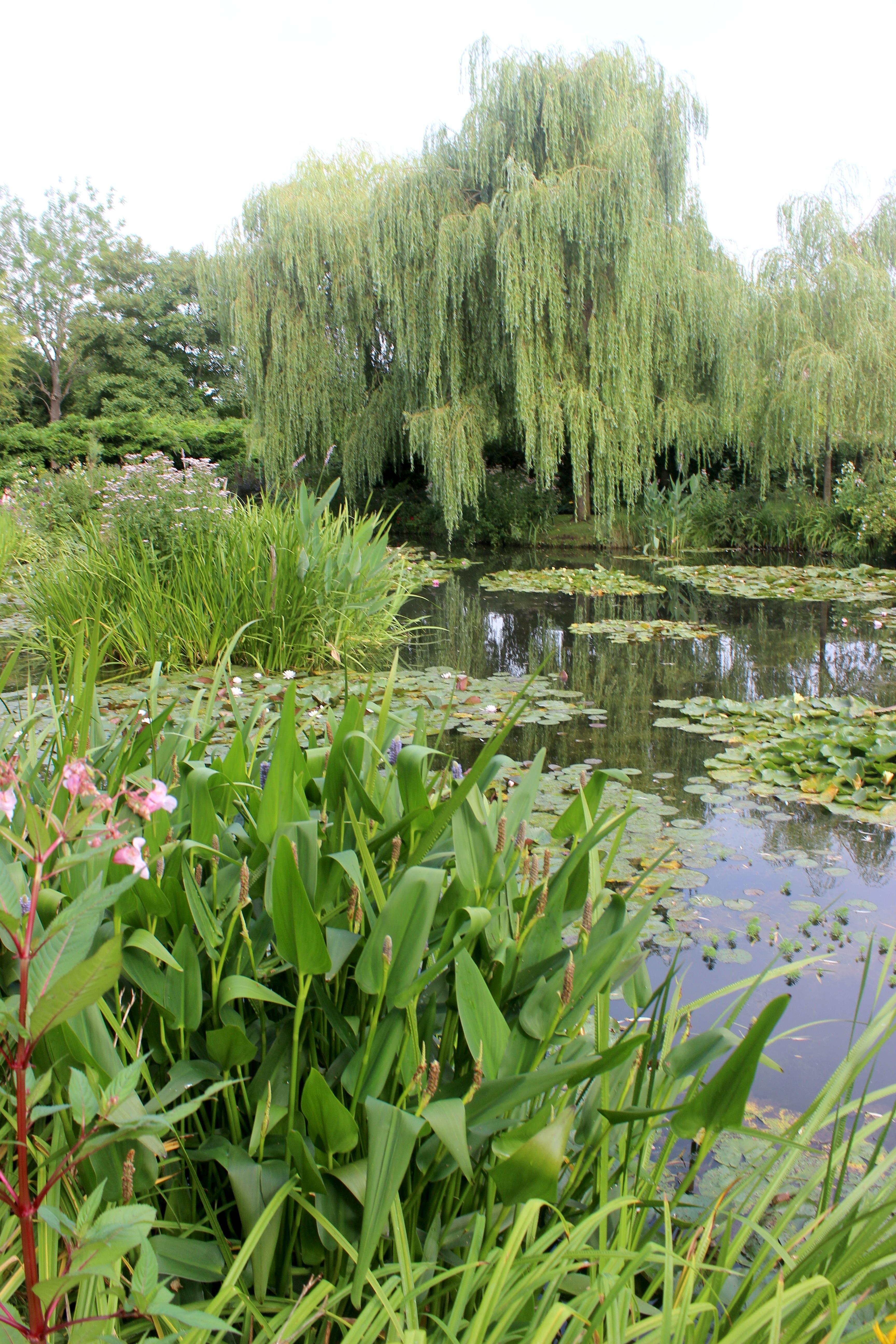 File Casa y jardn de Monet Giverny 46 JPG Wikimedia mons