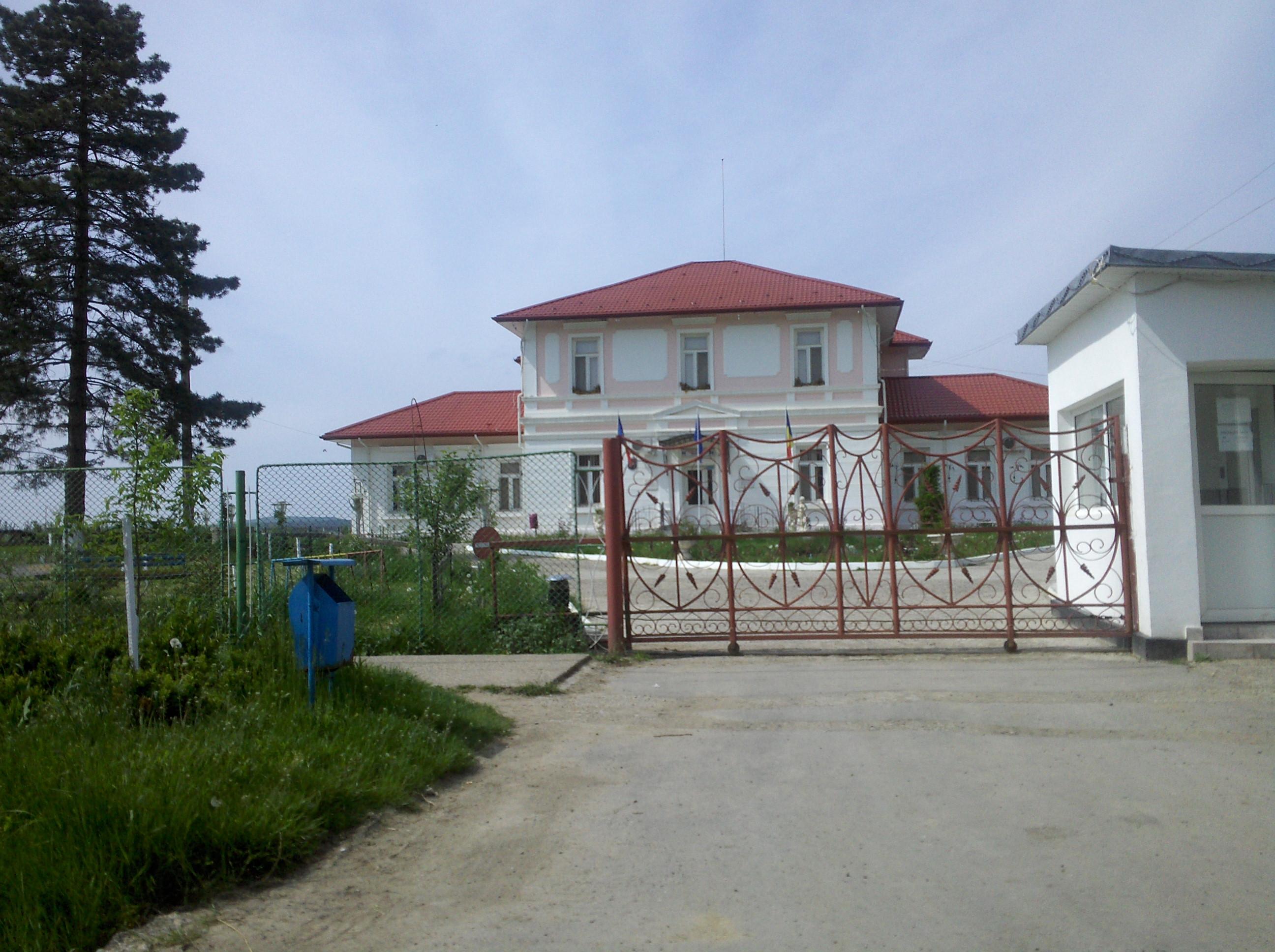 Comuna Băcești, Vaslui