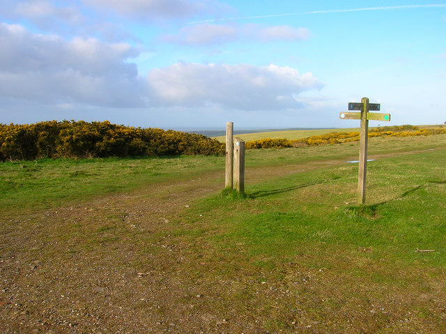 Choice of Routes, Beddingham Hill - geograph.org.uk - 760698