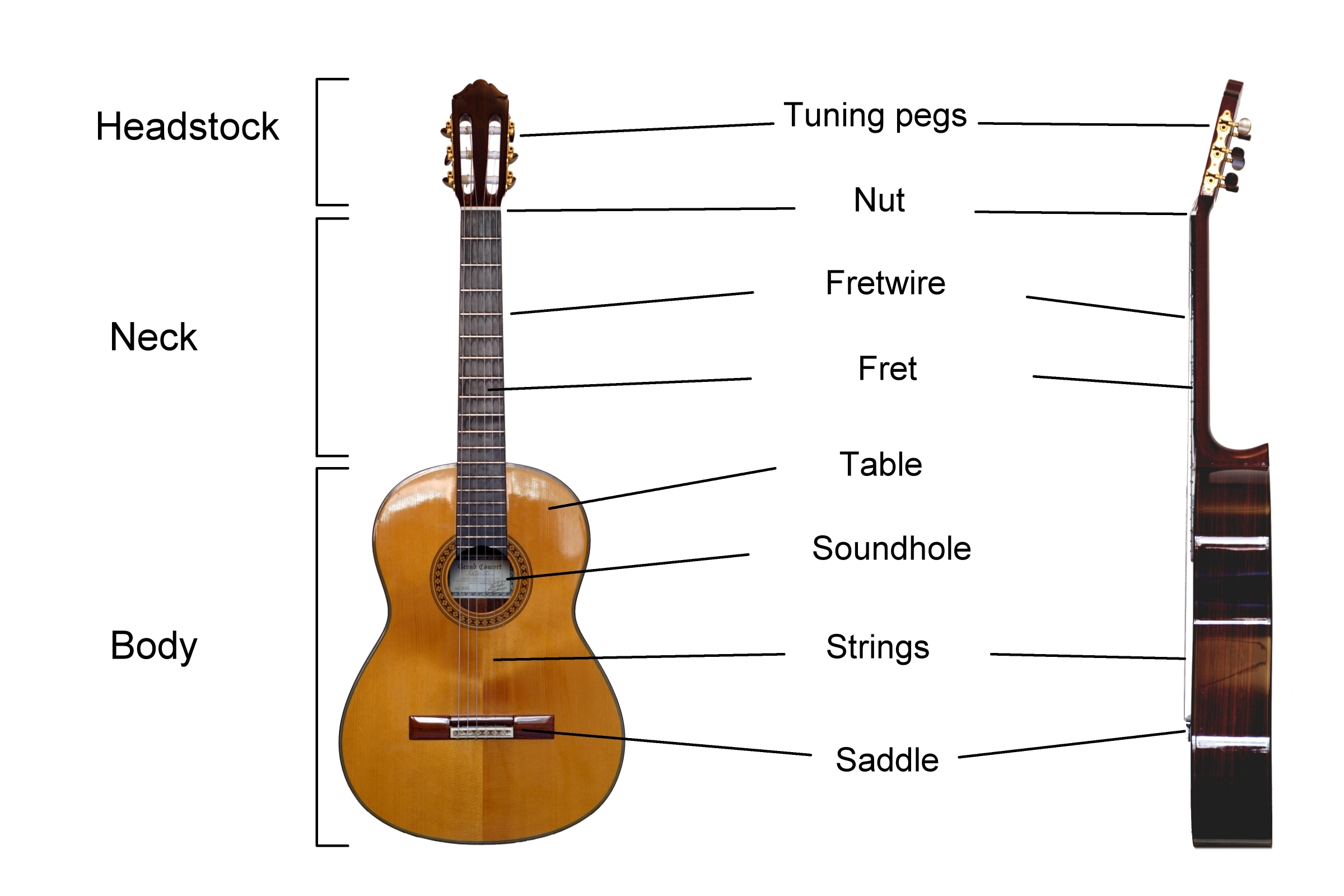 Strings On A Ukulele Diagram Trusted Wiring Diagrams Ukulelediagram File Classical Guitar Labelled English Wikimedia Commons String Position