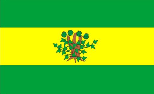 Concello de Oroso - Bandera.png