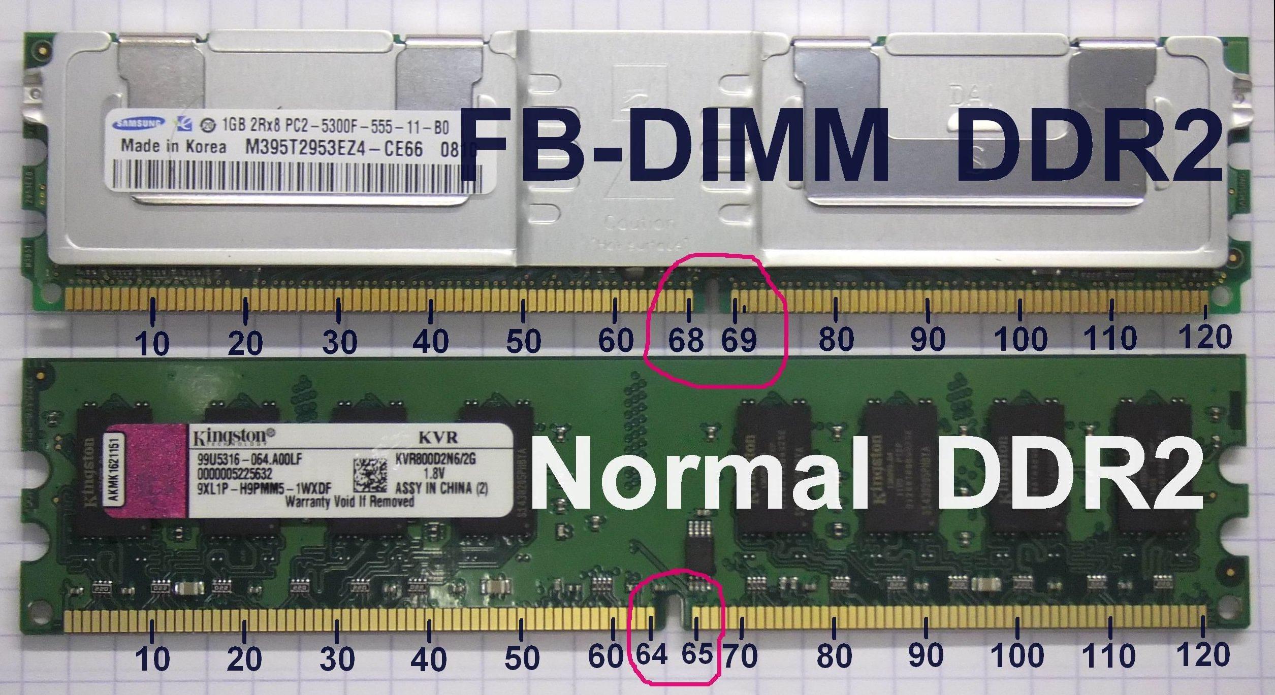 https://upload.wikimedia.org/wikipedia/commons/8/83/FB-DIMM_DDR2_vs._DDR2_photo_with_pin_count.jpg