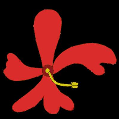 file flower morphology symmetry asymmetrical png wikimedia commons