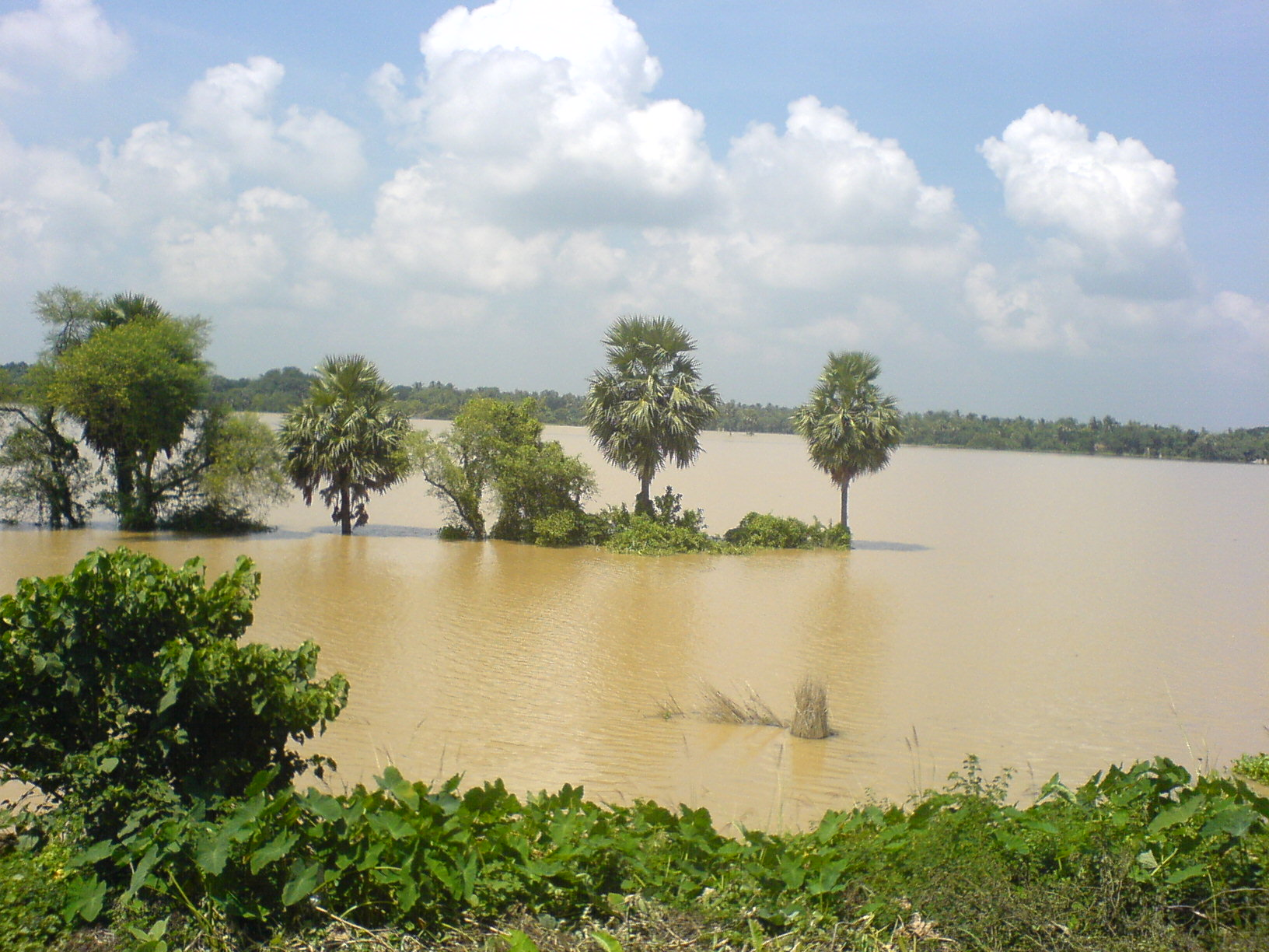 rainy season in bangladesh essay Related post of essay on rainy season in bangladesh tones in essays length of a 1500 word essay this entry was posted in essay on rainy season in bangladesh on may.