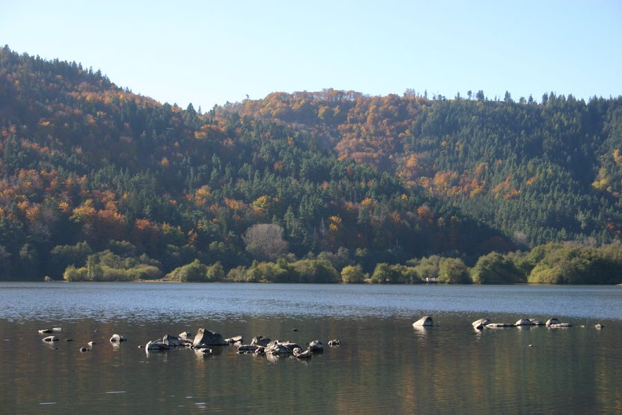 lac Chambon en automne (photo Wikipedia)