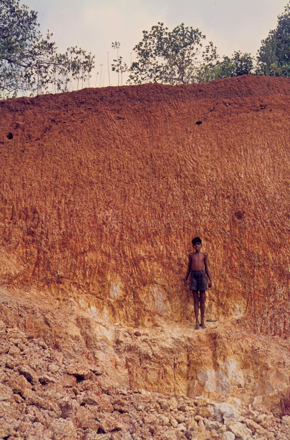 Fichier laterite formation on gneiss c wikip dia for Soil in india