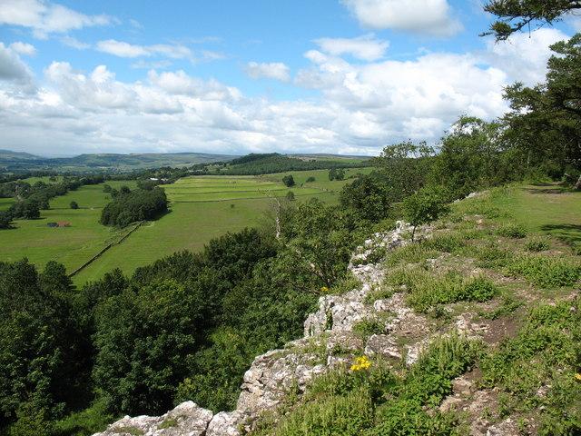 Limestone edge, Leyburn Shawl - geograph.org.uk - 891211