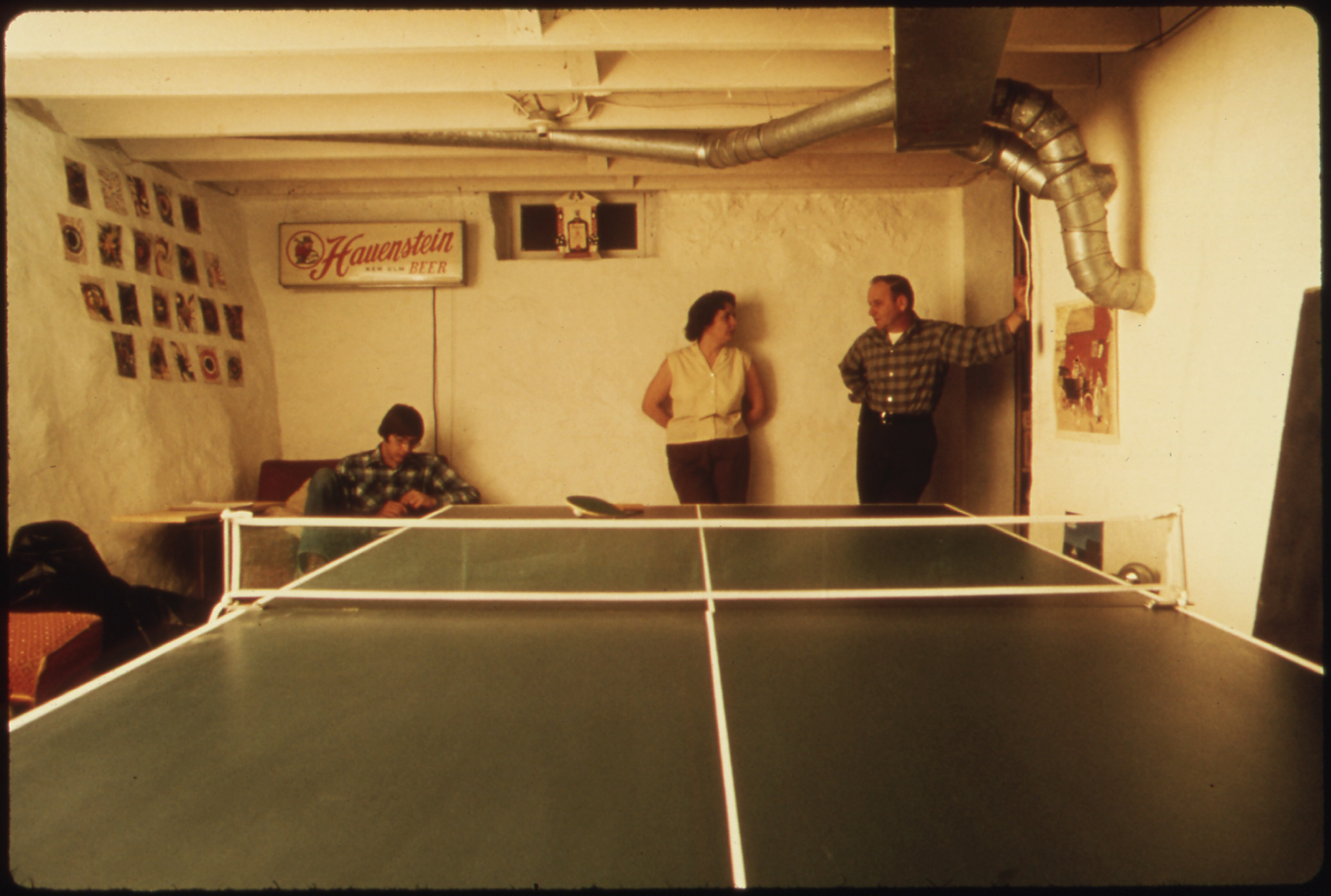 file mr and mrs wallace a wolf in the basement recreation room of