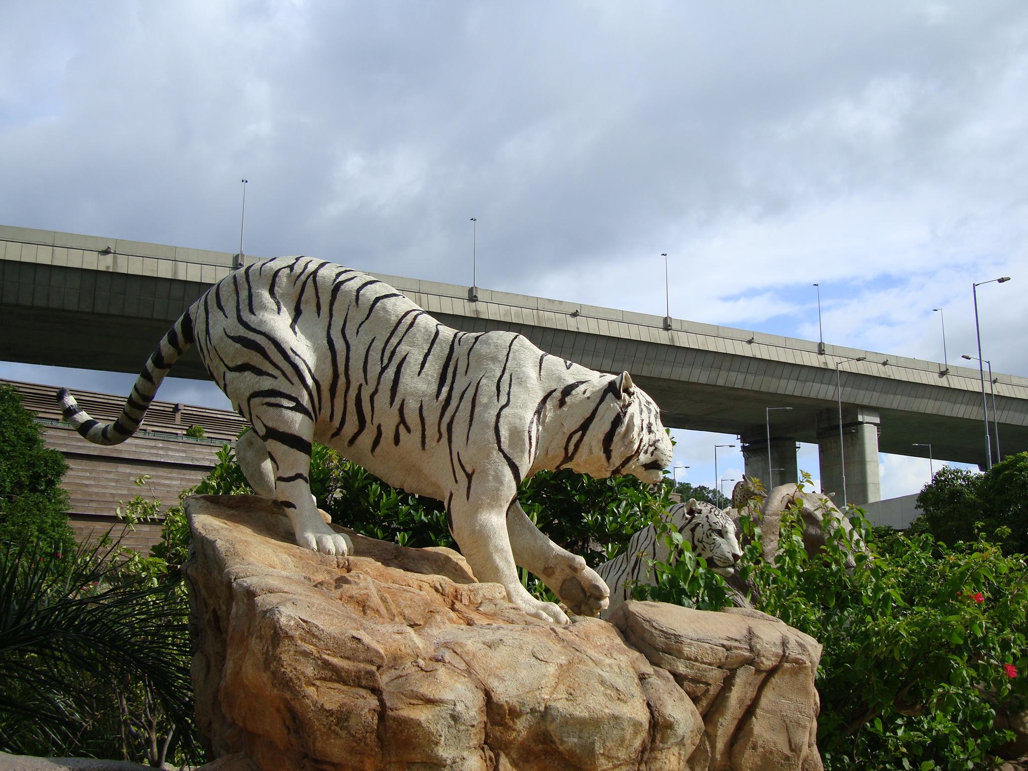 file noah u0027s ark garden 3 jpg wikimedia commons