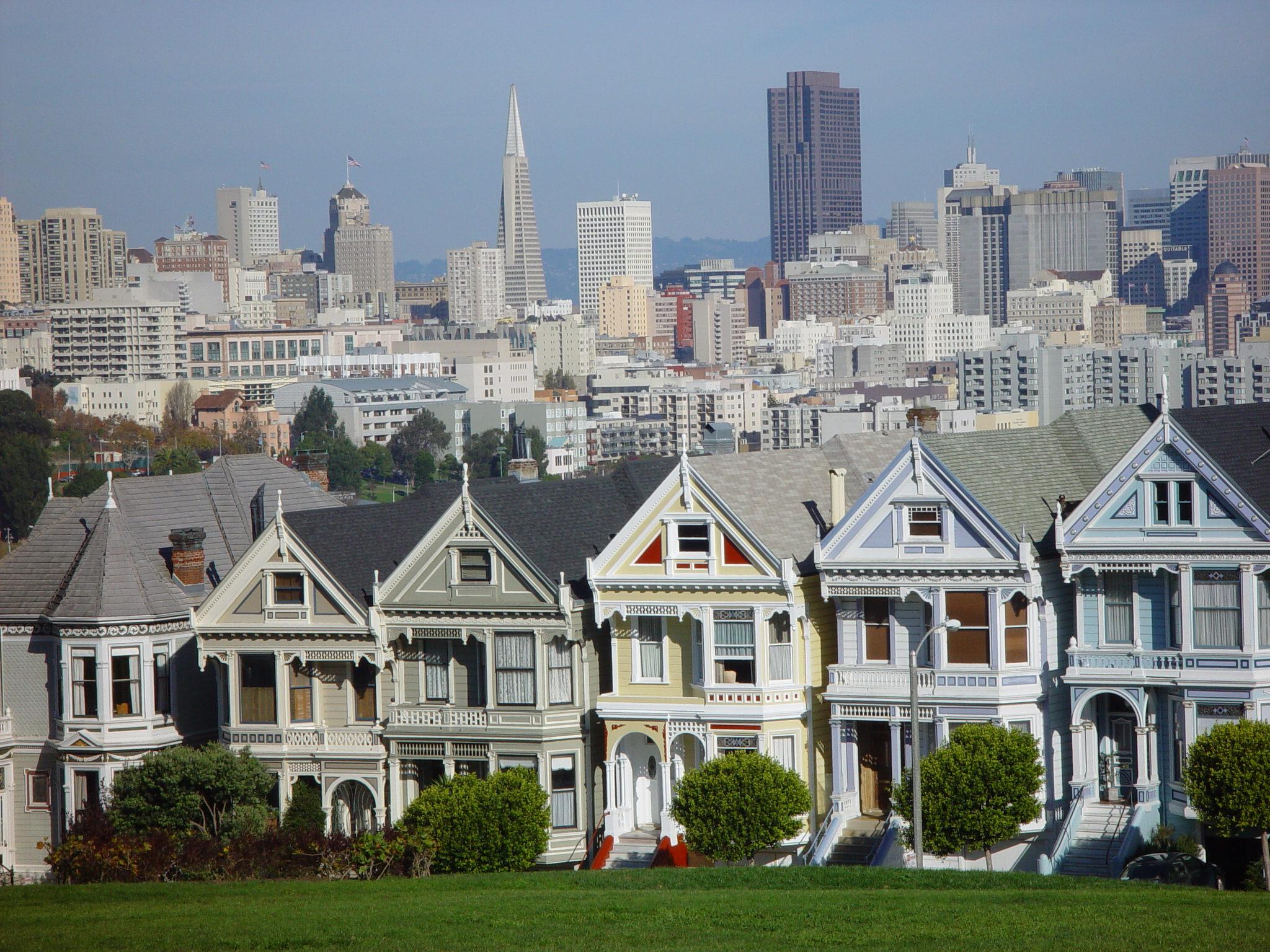 San Francisco Big Cats Rotated