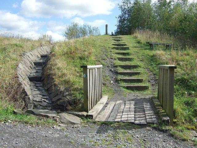 Parc Penallta - Skylark Trail - geograph.org.uk - 571021