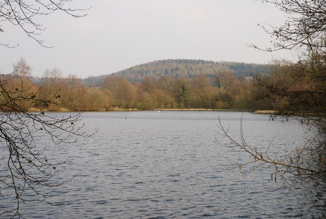 Park Pond - geograph.org.uk - 382774