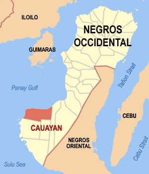 Map of Negros Occidental showing the location of Cauayan
