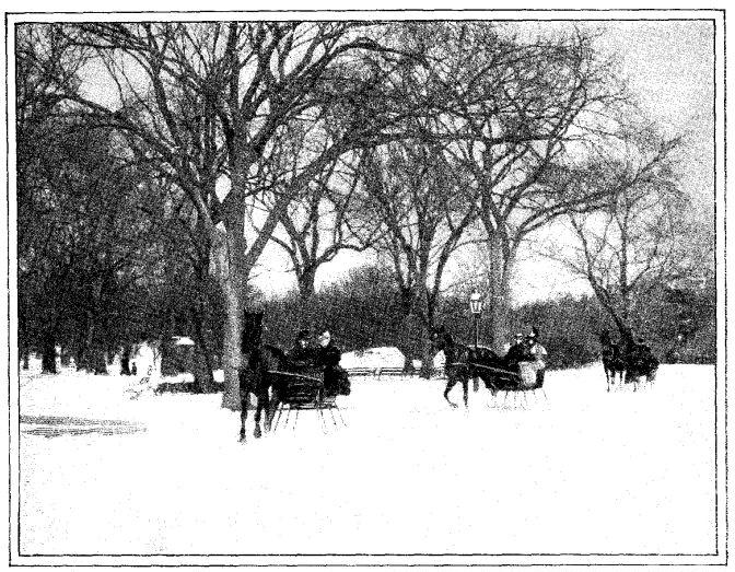 File:Photo 10--Central Park in winter.jpg