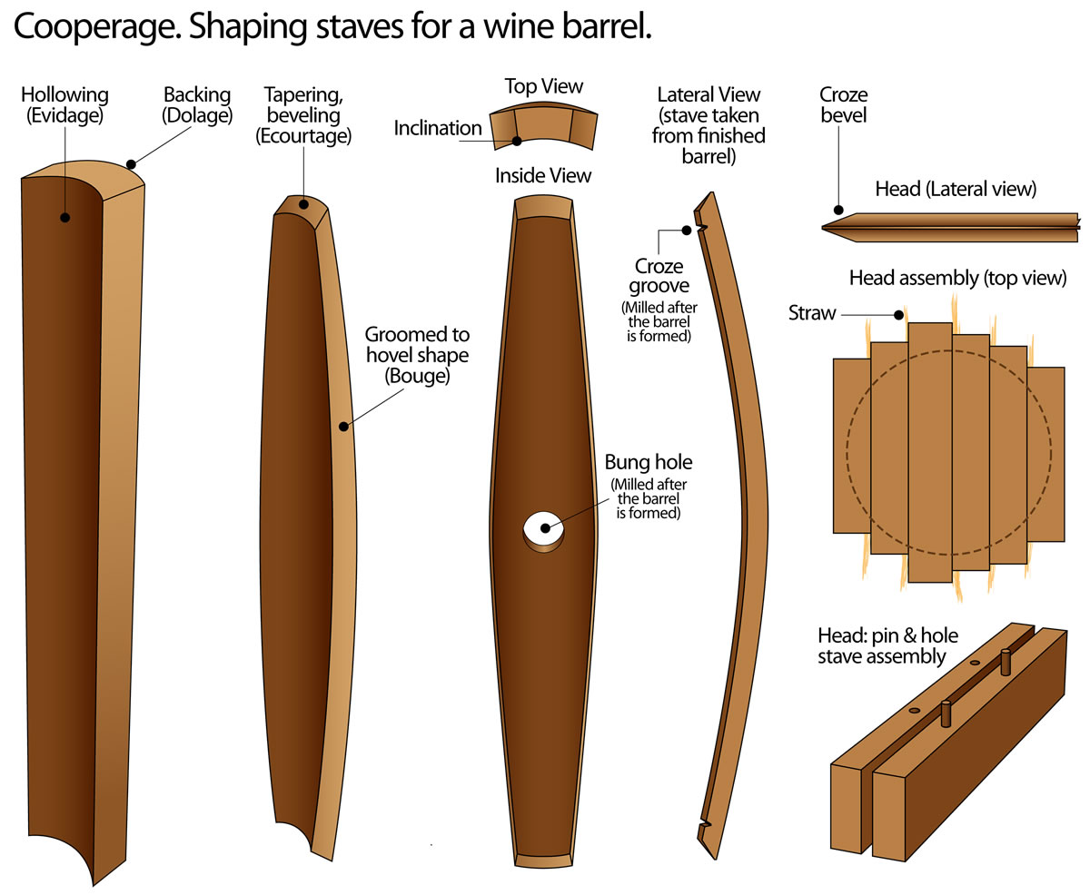 Fileprocess Of Shaping Staves For An Oak Wine Barrel Toneleria