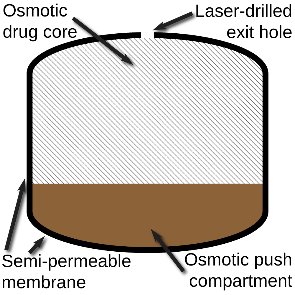 File:Push-Pull Osmotic Pump diagram.png - Wikimedia Commons