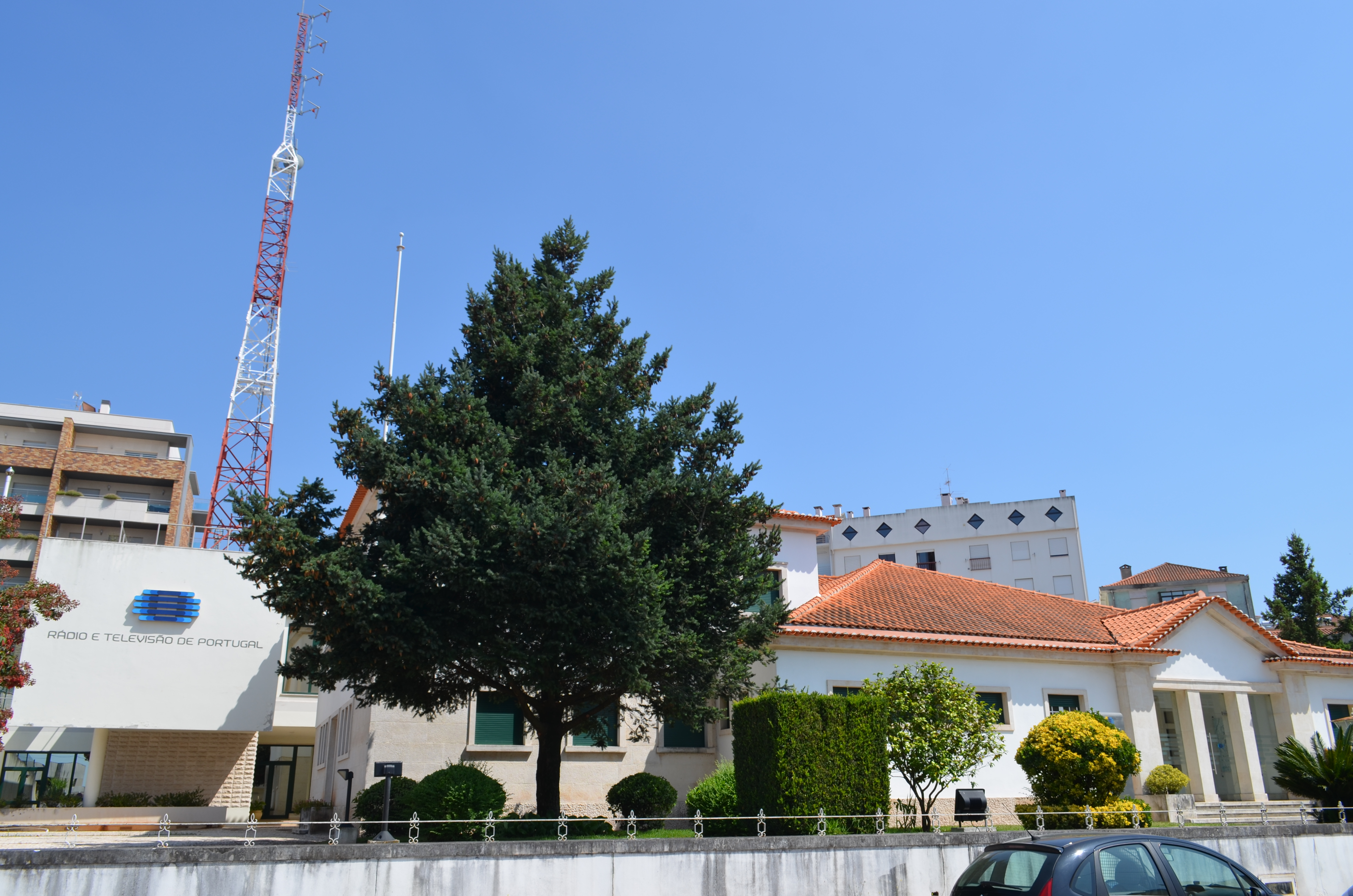 Radiotelevisao portuguesa internacional online dating
