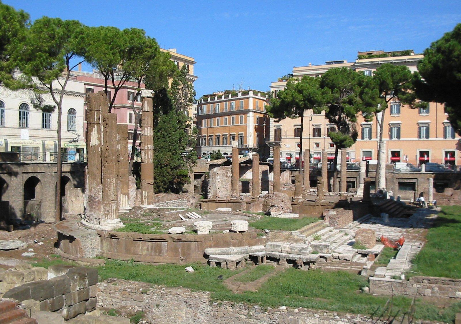 Largo di Torre Argentina à Rome, lieu de prise en charge et de soin des chats de rues. Photo d'Alessio Damato.