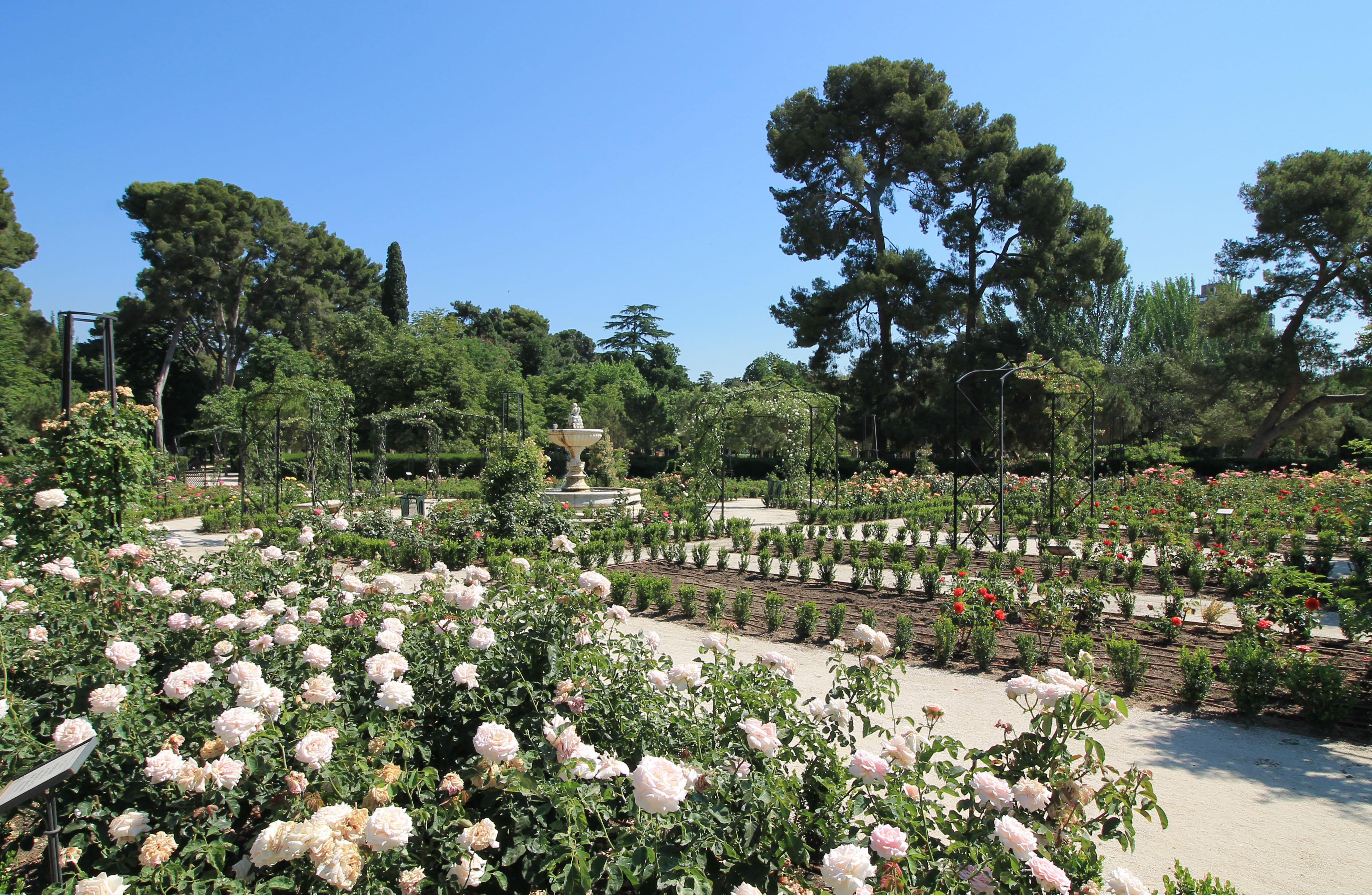Retiro Park Rose Garden