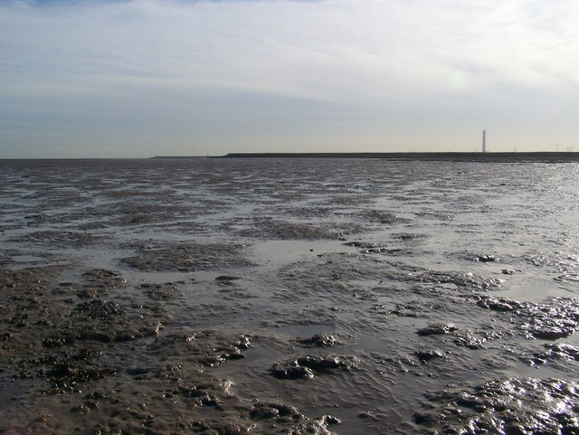 Shoreline looking east at Low Tide - geograph.org.uk - 1015302