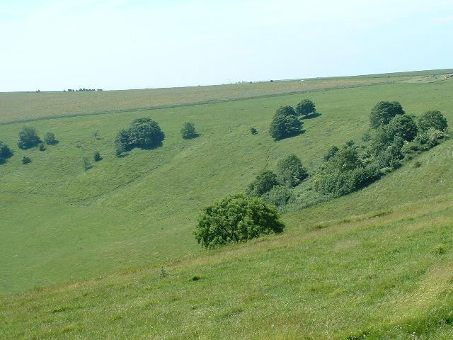 Steyning Bowl - geograph.org.uk - 20019