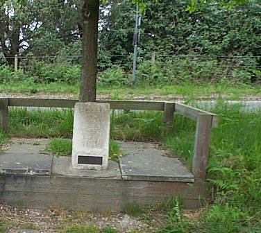 File:TE Lawrence fatal motorcycle crash memorial tree.png