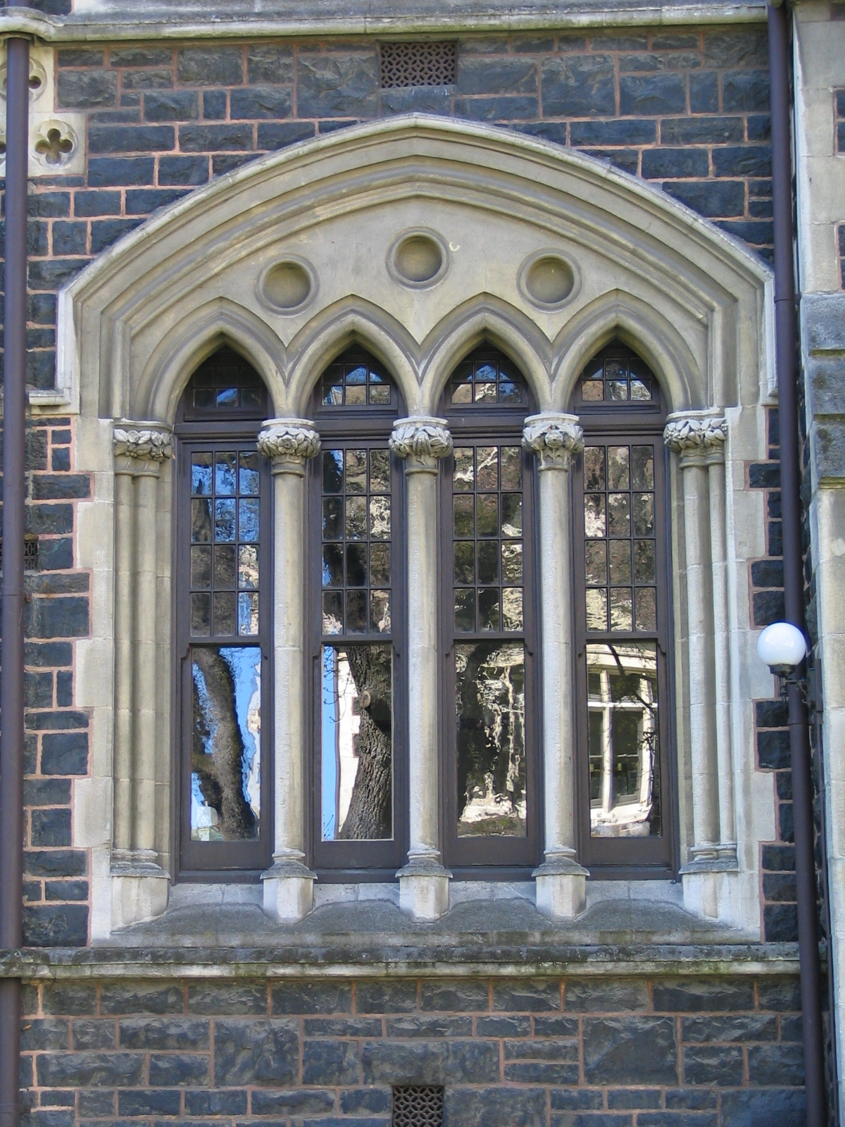 university of otago - photo #36