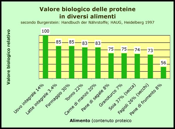 Valore Biologico Wikipedia
