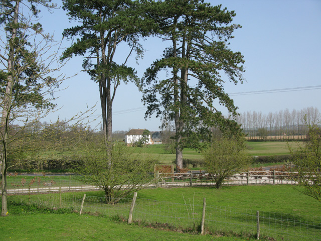 View towards Swallow Mill Farm, Little Chart - geograph.org.uk - 1817594