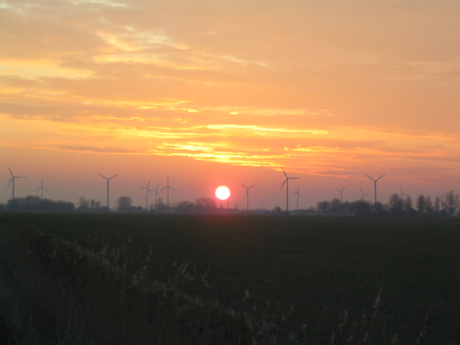 File Wind turbine dawn...