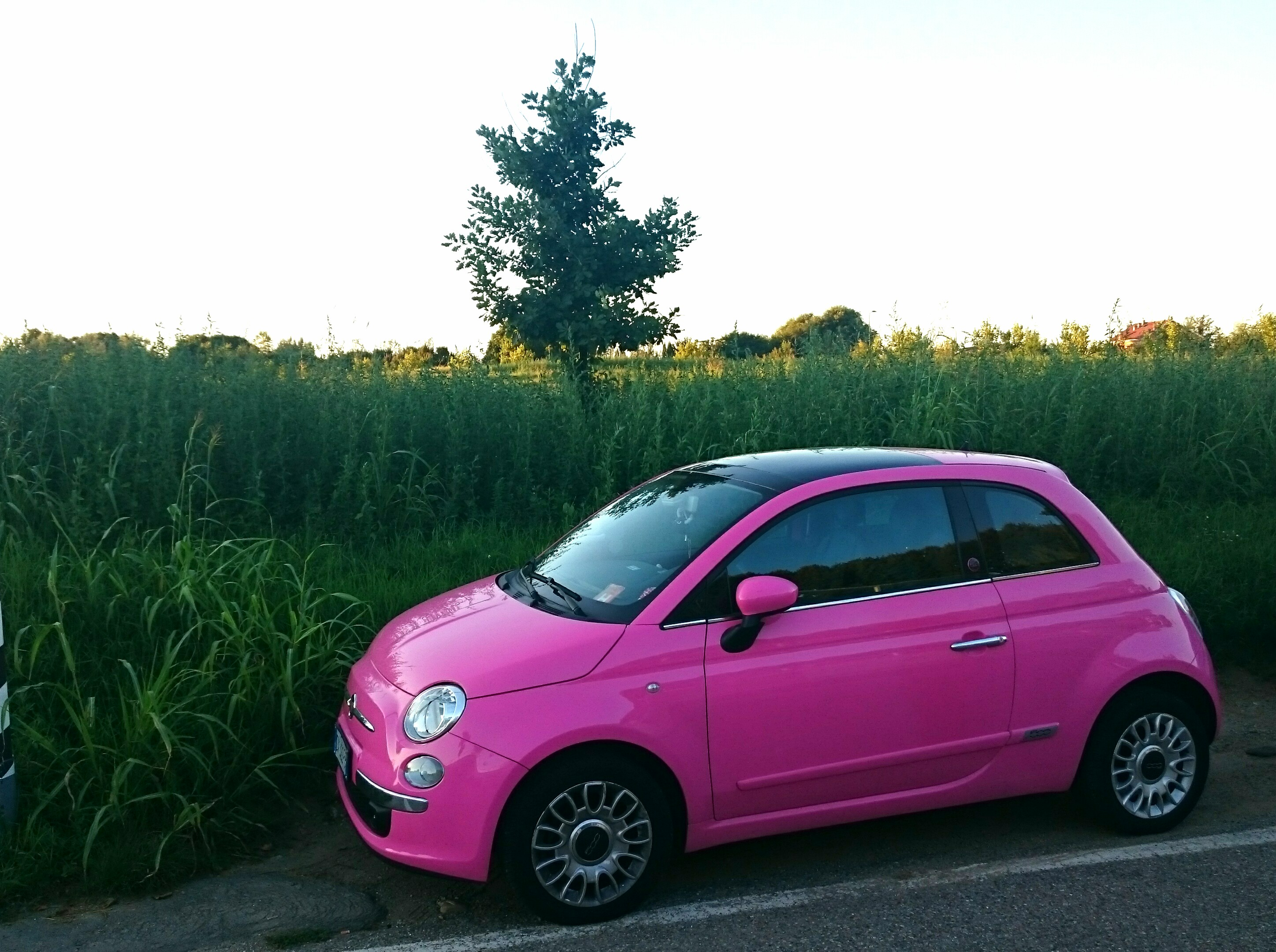 file 15 italy fiat 500 pink premium hatchback in milan jpg wikimedia commons. Black Bedroom Furniture Sets. Home Design Ideas
