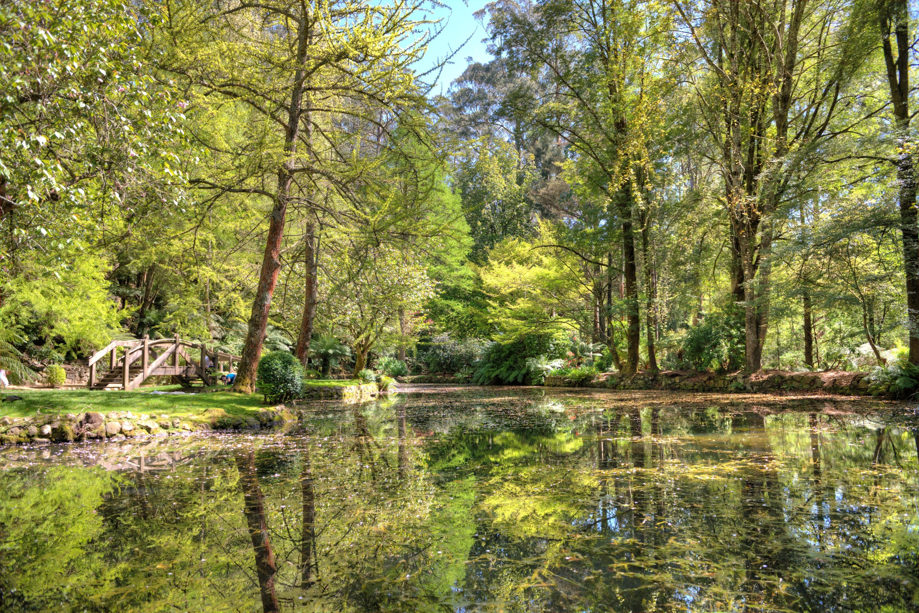 Burnham Beeches Nature Reserve Car Park