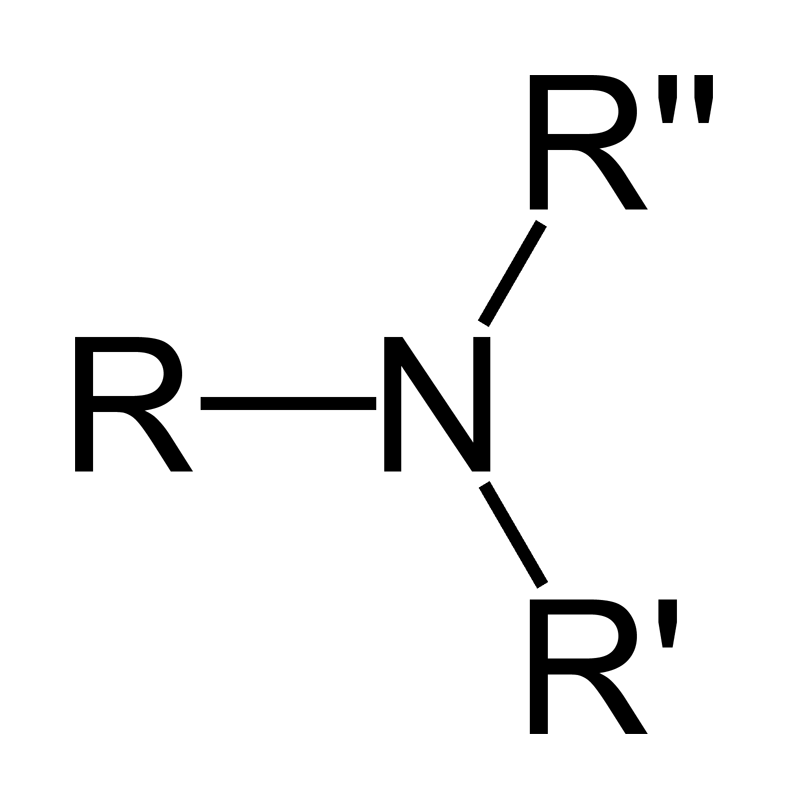 What are the reactions for amines and amides? + Example