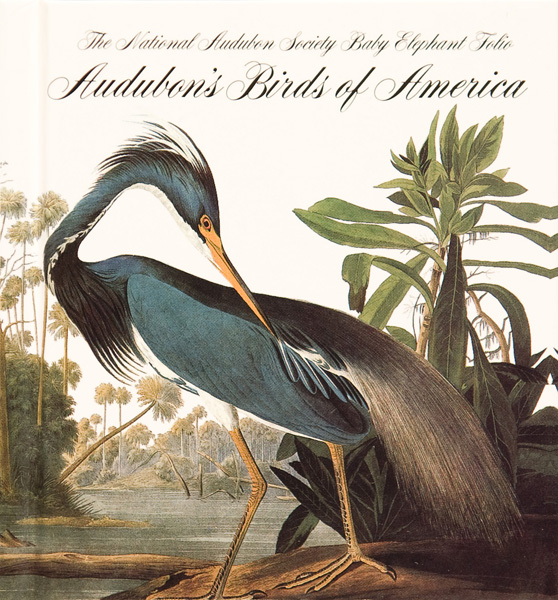 Image Result For John James Audubon