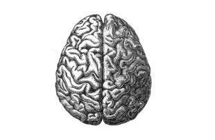 creatividad, pedagogía, psicología, autosmo,