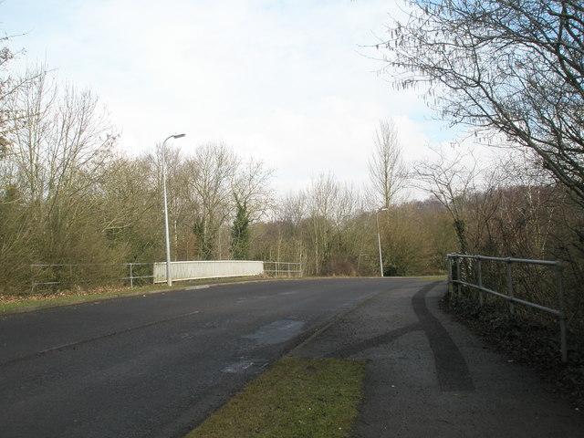 Bridge over Canal Walk in Fishlake Meadows - geograph.org.uk - 1169816