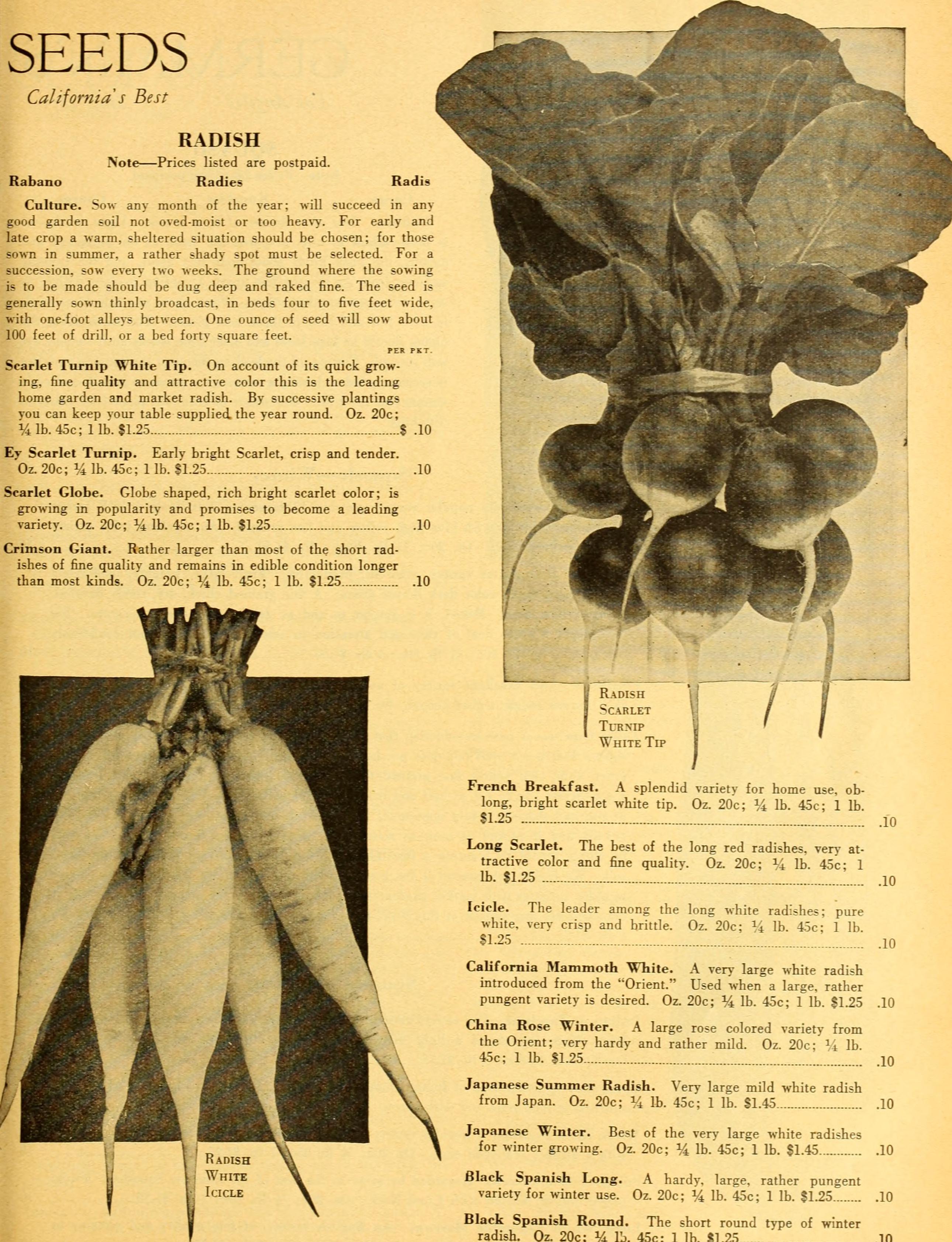 File:California Gardening (1932) (20506194552)