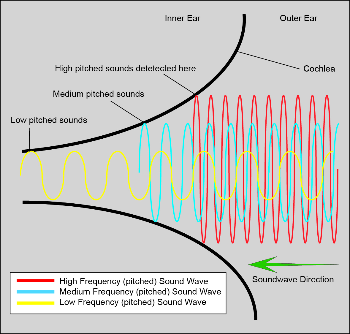 Plot Diagram Poster: Cochlear Function Diagram.jpg - Wikimedia Commons,Chart
