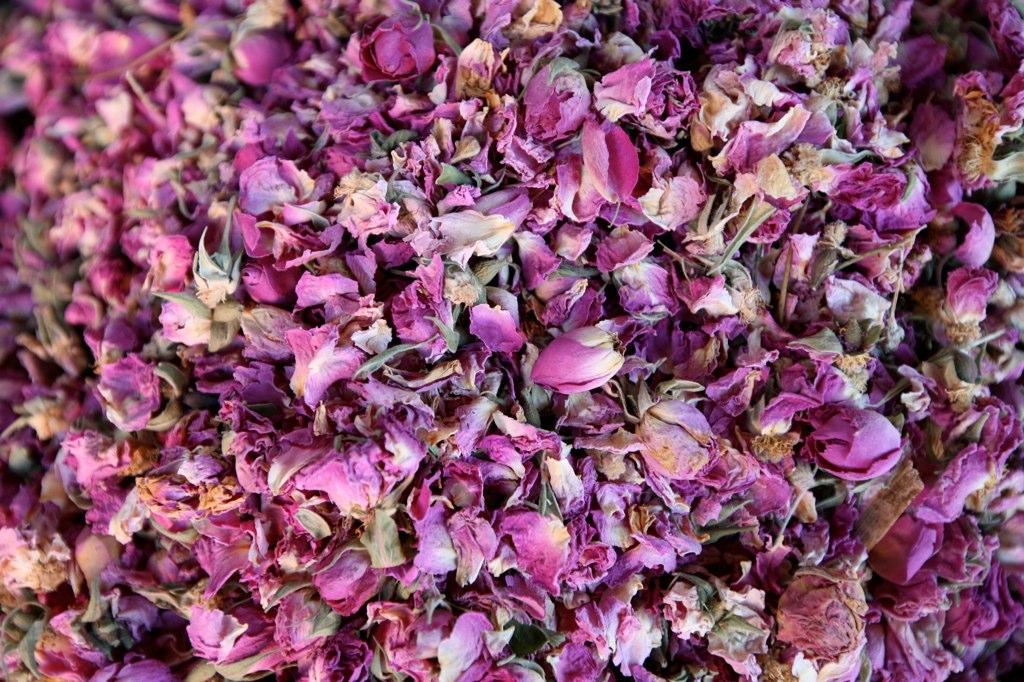 https://upload.wikimedia.org/wikipedia/commons/8/84/Dried_Roses_%284260289056%29.jpg