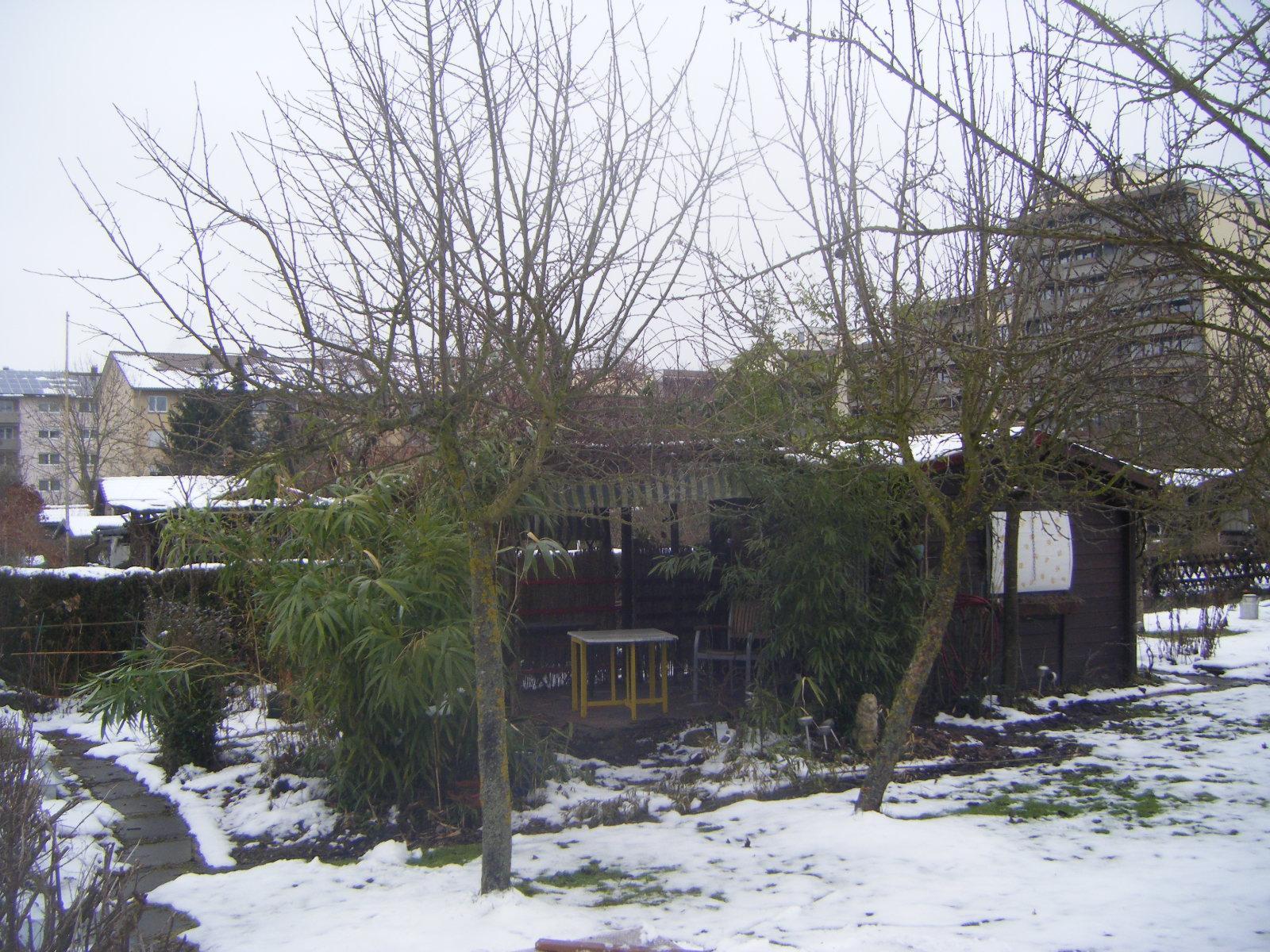 Garten Im Winter file garten im winter januar 2011 panoramio jpg wikimedia commons