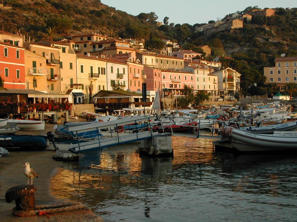 Giglio Porto - Isola del Giglio - GiglioNews