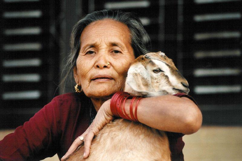 Gurung hugging goat
